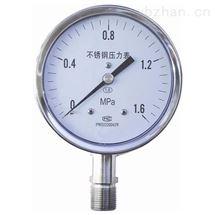 YB-100不鏽鋼壓力表