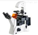 倒置荧光显微镜MHFL-2000