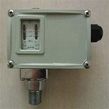 D501/7DK智能防爆压力控制器