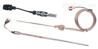 WZPM-202端面热电阻