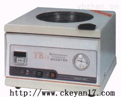 真空恒温干燥箱, YB-1A真空恒温干燥箱生产厂家