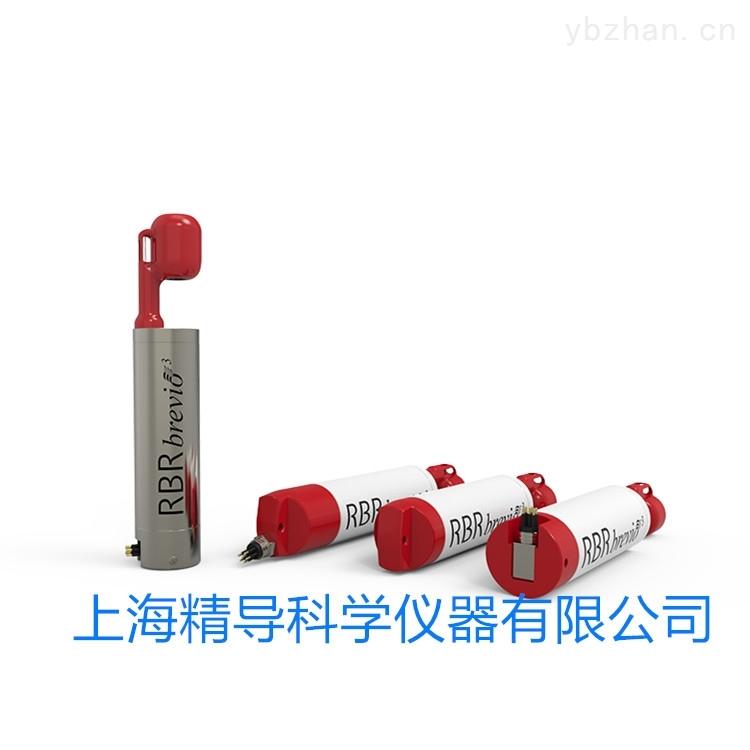 加拿大RBRbrevio3 CTD多参数温盐深仪水质仪