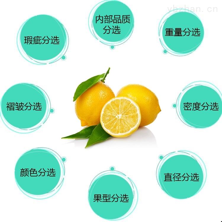 柠檬分拣设备