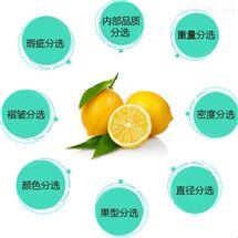 柠檬重量分级设备