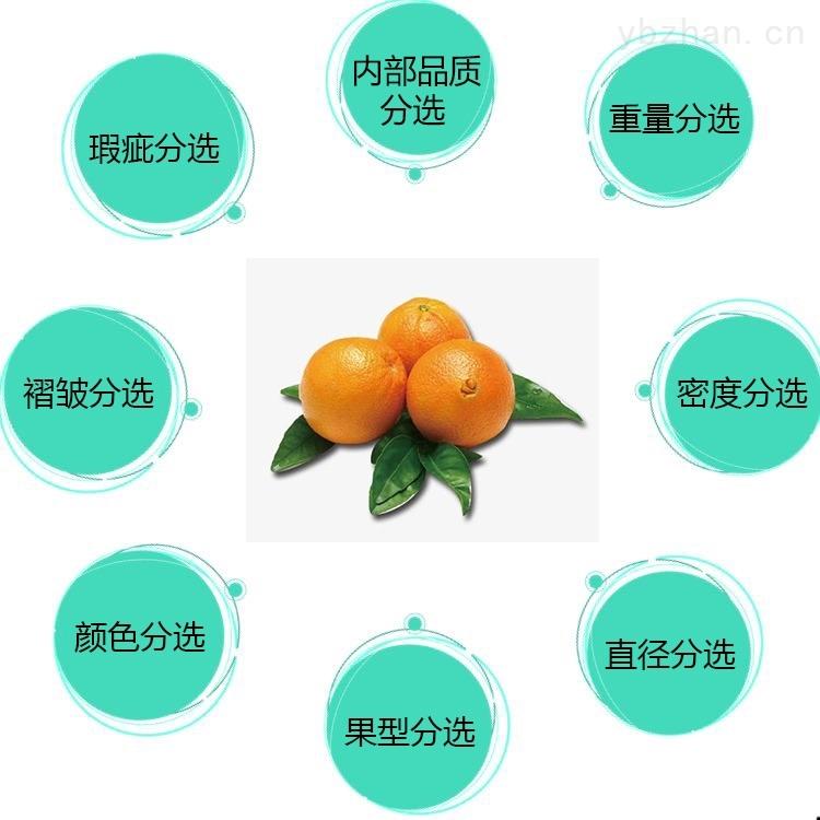 脐橙分选设备