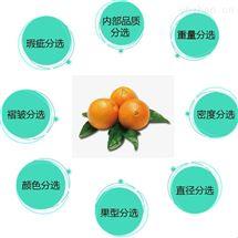 脐橙分拣机器