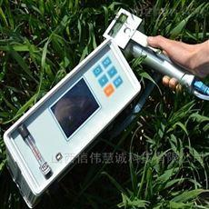 WGY-1F植物蒸腾速率测量仪