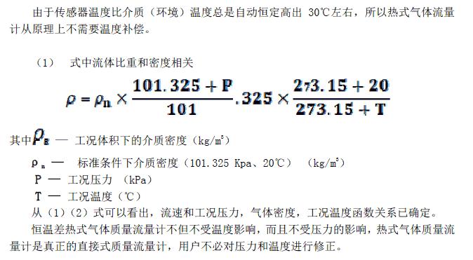 烟气流量计/流速仪 RM202
